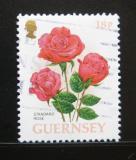 Poštovní známka Guernsey 1997 Růže Mi# 727
