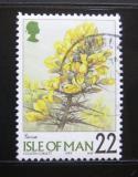 Poštovní známka Ostrov Man 1999 Květiny Mi# 808