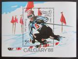 Poštovní známka Laos 1987 ZOH Calgary Mi# Block 114