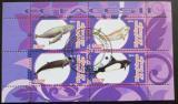 Poštovní známka Kongo 2010 Delfíni II