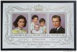 Poštovní známka Lucembursko 1988 Královská rodina Mi# Block 15