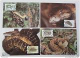Maxikarty Jamajka 1984 Hadi, WWF 019 Mi# 591-94 Kat 70€ +