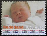 Poštovní známka Nizozemí 2003 Catharina-Amalia Mi# 2188