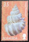 Poštovní známka Bermudy 2002 Lastura Mi# 834 I