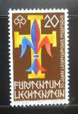 Poštovní známka Lichtenštejnsko 1981 Skauti Mi# 773