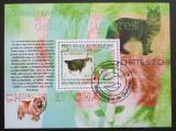 Poštovní známka Guinea 2009 Kočky na známkách Mi# Block 1769