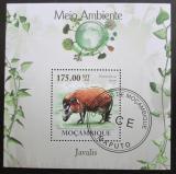 Poštovní známka Mosambik 2010 Štětkoun Mi# Block 299