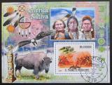 Poštovní známka Svatý Tomáš 2009 Američtí indiáni Mi# Block 688 Kat 10€