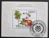 Poštovní známka Komory 2009 Ovoce Mi# Block 568 Kat 15€