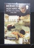 Poštovní známka Bermudy 2001 Akvárium Mi# 799