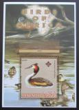 Poštovní známka Malawi 2005 Potápka roháč, skauting