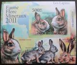 Poštovní známka Komory 2011 Králíci, neperf Deluxe Mi# 3050 B