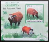 Poštovní známka Komory 2009 Štětkoun africký neperf. Mi# 2432 B