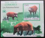 Poštovní známka Komory 2009 Štětkoun africký neperf. Mi# 2433 B