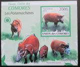 Poštovní známka Komory 2009 Štětkoun africký neperf. Mi# 2434 B
