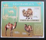 Poštovní známka Komory 2009 Velbloud neperf Deluxe Mi# 2130 B
