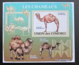 Poštovní známka Komory 2009 Velbloud neperf Deluxe Mi# 2131 B