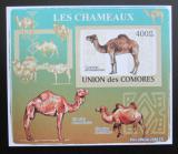 Poštovní známka Komory 2009 Velbloud neperf Deluxe Mi# 2132 B