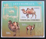 Poštovní známka Komory 2009 Velbloud neperf Deluxe Mi# 2133 B
