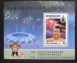 Poštovní známka KLDR 1995 Wrestling Mi# Block 335