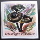 Poštovní známka Rwanda 1980 Houby neperf. Mi# 1052 B