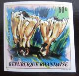 Poštovní známka Rwanda 1980 Houby neperf. Mi# 1053 B