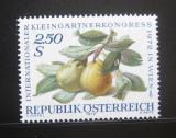 Poštovní známka Rakousko 1972 Hrušky Mi# 1394