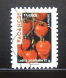 Poštovní známka Francie 2009 Pozdrav z dovolené Mi# 4667