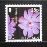 Poštovní známka Ostrov Man 2004 Silene dioica Mi# 1127