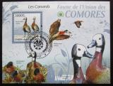 Poštovní známka Komory 2009 Husy Mi# Block 515 Kat 15€