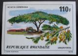 Poštovní známka Rwanda 1979 Acacia sieberana neperf. Mi# 991 B Kat 8€