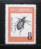 Poštovní známka Albánie 1963 Brouk Mi# 737 Kat 8.50€
