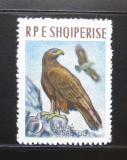 Poštovní známka Albánie 1963 Orel Mi# 742