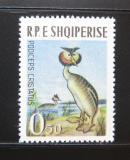 Poštovní známka Albánie 1963 Potápka Mi# 741