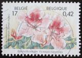 Poštovní známka Belgie 2000 Květiny Mi# 2955