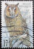 Poštovní známka Belgie 1999 Sova Mi# 2860