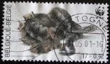 Poštovní známka Belgie 2000 Zmije obecná Mi# 2947