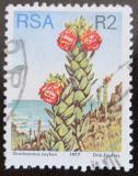 Poštovní známka JAR 1977 Orothamnus zeyheri Mi# 528 A