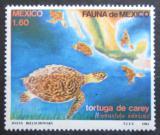 Poštovní známka Mexiko 1982 Želva Mi# 1828