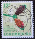 Poštovní známka Lucembursko 1990 Milovníci přírody Mi# 1247