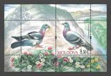 Poštovní známky Moldavsko 2010 Holub skalní Mi# Block 50