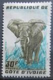 Poštovní známka Pobřeží Slonoviny 1959 Slon africký Mi# 206