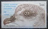 Poštovní známka Francouzská Antarktida 1980 Pterodoma mollis Mi# 137