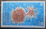 Poštovní známka Francouzská Antarktida 1986 Ježovka mořská Mi# 211