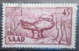 Poštovní známka Sársko 1951 Přírodní zajímavost Mi# 286