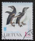 Poštovní známka Litva 2000 Tučňák magellanský Mi# 734