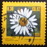Poštovní známka Estonsko 2007 Kopretina bílá Mi# 574