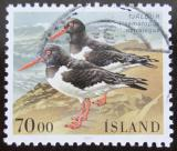 Poštovní známka Island 1987 Ústřičník Mi# 670