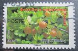 Poštovní známka Francie 2012 Angrešt Mi# 5312
