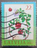 Poštovní známka Lotyšsko 2007 Brusinky Mi# 707